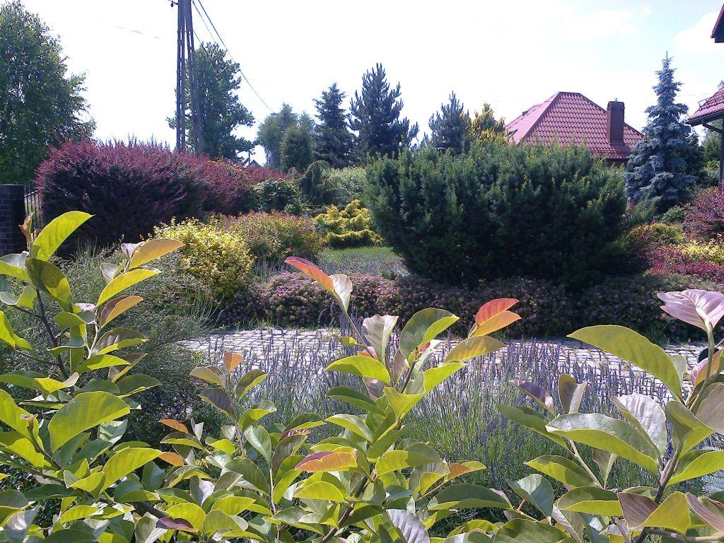 Pielęgnacja ogrodów Oświęcim