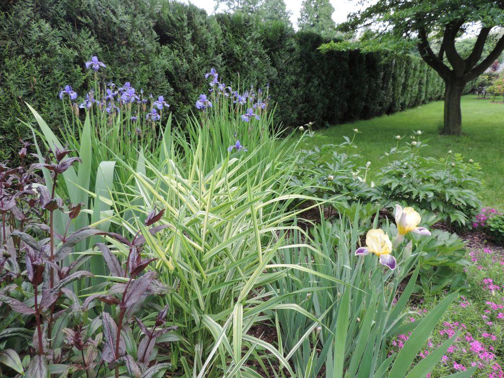 Zakładanie ogrodów Oświęcim