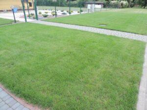 Pielęgnacja i zakładanie ogrodów Poznań